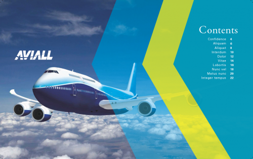 Aviall Annual Report