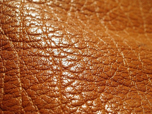 Leather close-up