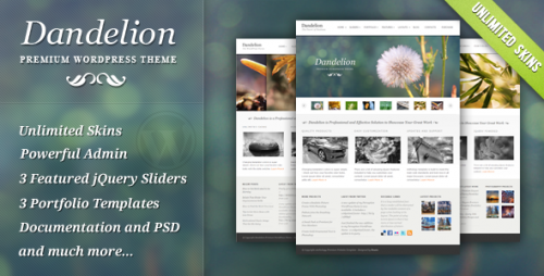 Dandelion - Powerful WordPress Theme