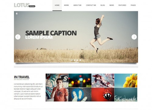 Lotus, Flexible Responsive WP Theme