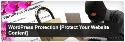 WordPress Protection